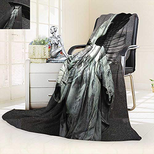 vanfan Throw Fuzzy Fleece Microfiber Blanket Collection Sculpture an Angel Dark Background Catholic Belief Century Old Artwork,Silky Soft,Anti-Static,2 Ply Thick Blanket. (80''x60'') by vanfan