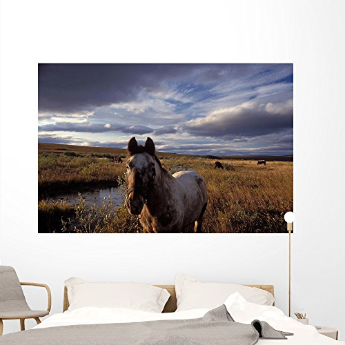 Alaskan Mountain Ponies Wall Mural by Wallmonkeys Peel and Stick Graphics (72 in W x 48 in H) (Pony Mural)