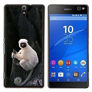 Pequeño mono lindo Ape Madagascar- Metal de aluminio y de plástico duro Caja del teléfono - Negro - Xperia C5 E5553 E5506 / C5 Ultra