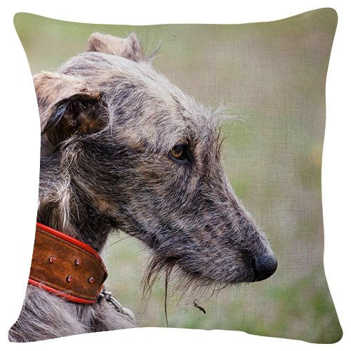 Amazon.com  Pillowcase dog face eyes color - Decorative Personalized Throw  Pillow Cover - Soft Microfiber Polyester (Double sided printing) 18x18  Inches  ... def802718592