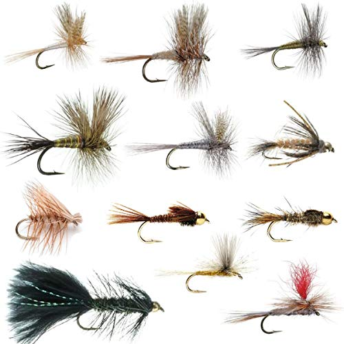 The Fly Fishing Place Eastern Trout Fly Assortment - Essential Dry and Nymph Fly Fishing Flies Collection - 2 Dozen Trout Flies with Fly Box