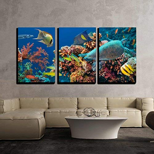 """wall26 - 3 Piece Canvas Wall Art - Colorful Underwater Offshore Rocky Reef with Coral and Sponges - Modern Home Art Stretched and Framed Ready to Hang - 16""""x24""""x3 Panels"""