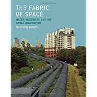 The Fabric of Space: Water, Modernity, and the Urban Imagination