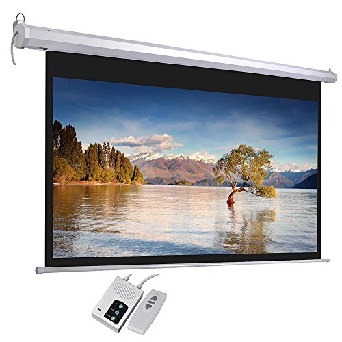 Projection Screen Remote (100