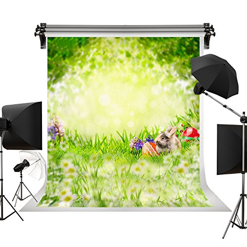 Kate Spring Easter Photography Props Red Eggs Flowers Photo Studio Backgrounds Green Natural Scenery Cute Rabbit Backdrops 10x10ft(3x3m) by Kate