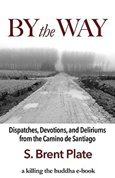By the Way: Dispatches, Devotions, and Deliriums from the Camino de Santiago by [Plate, S. Brent]