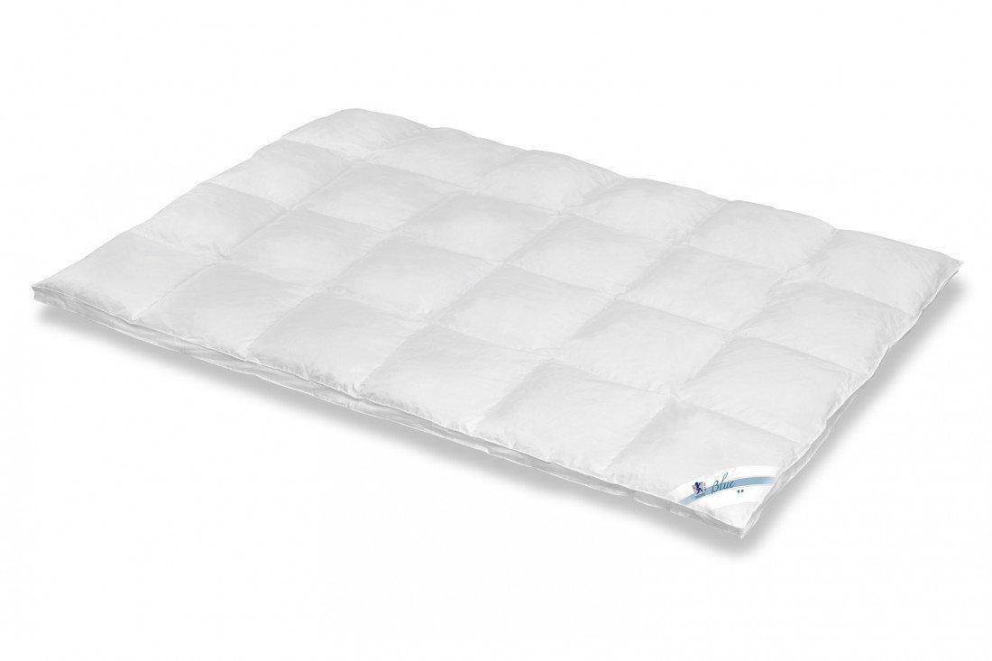 Spessarttraum Steppbett Blau 200 x 220 Füllgewicht 1960 g - Winter Bettdecke mit 60% Daunen und 40% Federn gefüllt