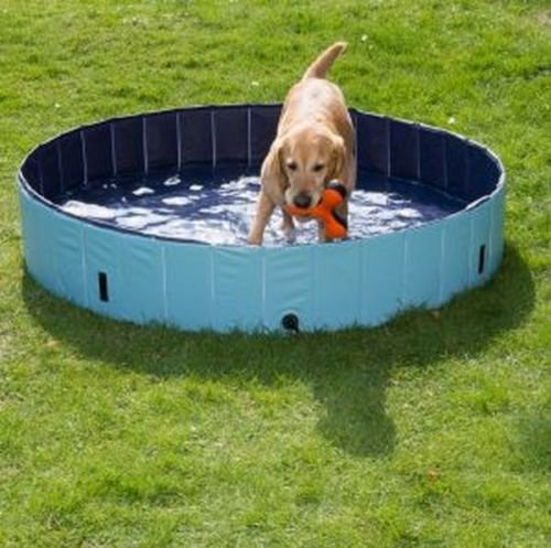 Dog Paddling Pool for Pets Portable Outdoor Garden Pool for Dogs and Puppies with cover sturdy non inflatable (Size Medium  Diameter 120cm x H 30cm)