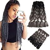 Two Tone Ombre Jumbo Braid Hair Extensions 60 Cm 5pcs/Lot 100g/Pc Synthetic Kanekalon Fiber For Twist Braiding Hair (24'' Black To Gray)