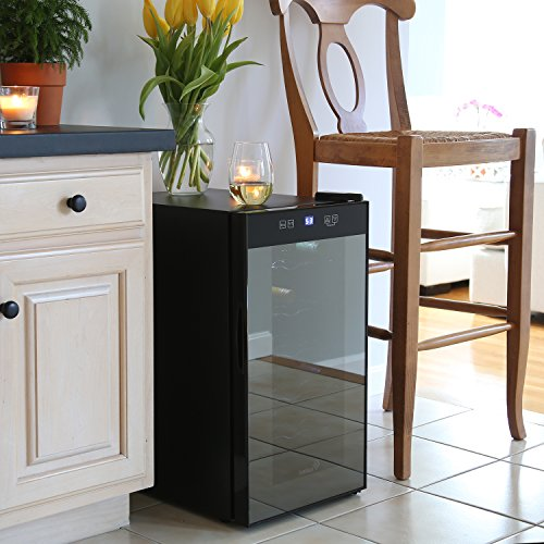 The 8 best wine fridge with bar