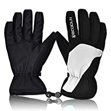 [2016 New Release]Ski Gloves, Hicool Waterproof Thermal Winter Ski Gloves Snowboard Snowmobile Motorcycle Cycling Outdoor Sports Gloves-Men's