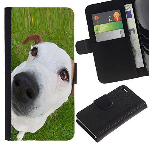 OMEGA Case / Apple Iphone 4 / 4S / jack Russell mutt mongrel white puppy / Cuir PU Portefeuille Coverture Shell Armure Coque Coq Cas Etui Housse Case Cover Wallet Credit Card