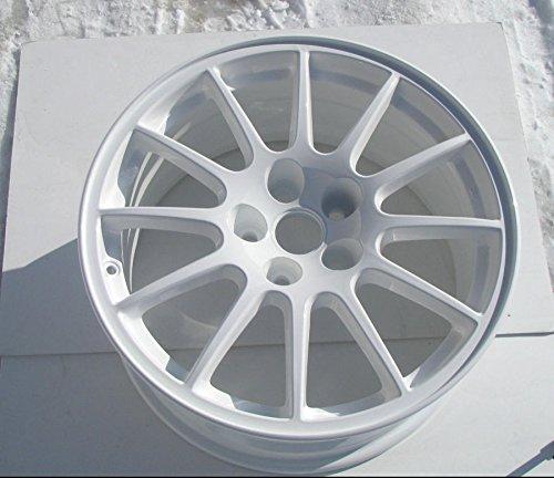 Super Durable Gloss White Powder Coating Powder Paint (1 LB)