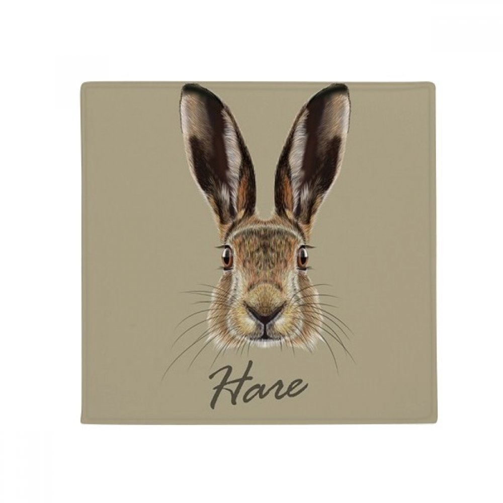 DIYthinker Grey Big-Nosed Wild Hare Animal Anti-Slip Floor Pet Mat Square Home Kitchen Door 80Cm Gift