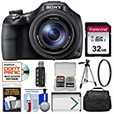 Sony Cyber-Shot DSC-HX400V Wi-Fi Digital Camera with 32GB Card + Case + Battery + Tripod + Filter + Kit Review