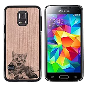 - / Cute Baby Kitten Funny Furry - - Funda Delgada Cubierta Case Cover de Madera / FOR Samsung Galaxy S5 Mini G870a / Jordan Colourful Shop/