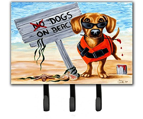 Dachshund Leash Holder (Caroline's Treasures AMB1341TH68 The Dog Beach Dachshund Leash or Key Holder, Large, Multicolor)