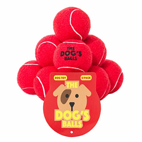 The Dog's Balls 12 Premium Red Dog Tennis Balls