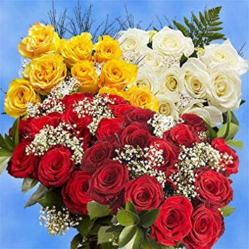 Amazoncom 16 Dozen Roses Best Price Red Color Roses