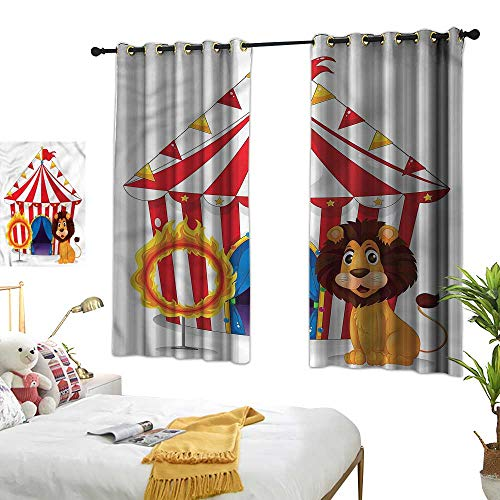 (Davishouse Simple Curtain Funny Lion and Fire Hoop Privacy Protection 55