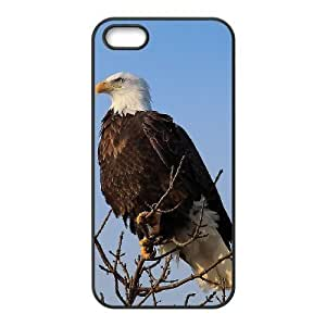 Bald Eagle New Fashion DIY Phone Case for Iphone 5,5S,customized cover case ygtg578773