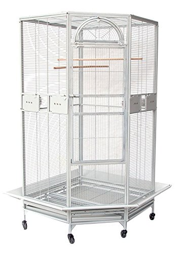 New Large Corner Parrot Bird Wrought Iron Cage - r30