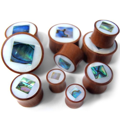 Abalone Mop - Pair of 7/8 Gauge (22mm) MOP & Square Abalone Shell Inlay Saba Wood Plugs - Double Flare (WD039)