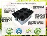 H2OtoGro DWC Hydroponic Grow Box #4 6-site