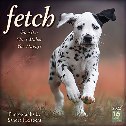 Fetch 2020 Calendar: Go After What Makes You Happy