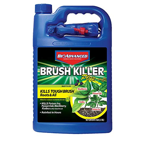 BioAdvanced 704655A Triclopyr Kills Kudzu, Poison Ivy and Other Tough Brush Killer Plus Non-Selective Weed Grass Control, 1-Gallon, Ready-To-Use