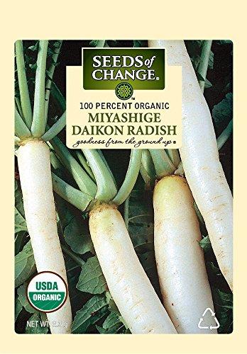 (Seeds of Change Certified Organic Miyashige Daikon Radish Seeds)