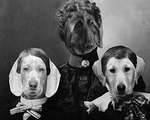 Widow Lady portrait Weimaraner puppy altered anthro art print ()