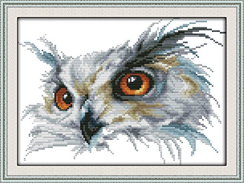 CaptainCrafts Hots Cross Stitch Kits Patterns Embroidery Kit - Owl ()