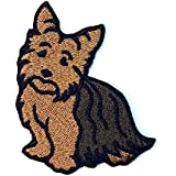 Amazoncom Fancy Yorkie Dog Patch Yorkshire Terrier Show Pet