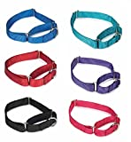 Gaurdian Gear Bulk Lot Martingale Dog Collars at Wholesale Prices Nylon Collar Multi Packs(Assorted - 14 to 20 Inch 3 of Each (24 Collars))