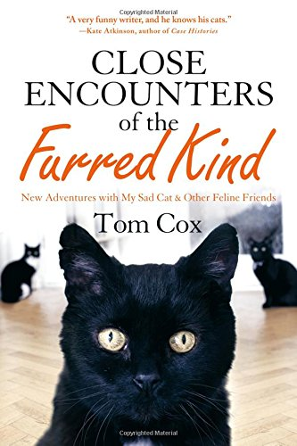close-encounters-of-the-furred-kind-new-adventures-with-my-sad-cat-other-feline-friends