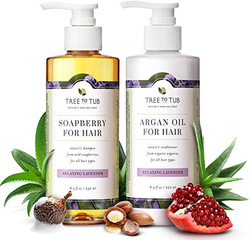 Gentle Argan Oil Shampoo & Conditioner by Tree to Tub-pH 5.5 Balanced Moisturizing Duo with Wild Soapberry & Organic Moroccan Oil - Nourishes Dry Hair & Very Sensitive Scalp, Sulfate Free (2 Pack) (Best Ph Balanced Shampoo And Conditioner)