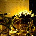Vmanoo M5 Battery Operated String Lights 100 LED Clear Mini Fairy Christmas Lighting Decor Timer For Outdoor Indoor Garden Patio Lawn Holiday Bedroom Wedding Decorations