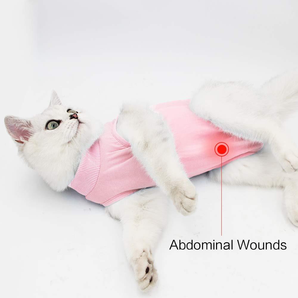 Home Abbigliamento Cat Professionale Recupero Vestito per Addominali ferite o malattie della Pelle Dopo Un Intervento Chirurgico Wear e-Collar Alternativa per Gatti e Cani