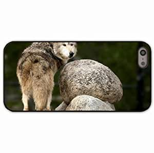 iPhone 5 5S Black Hardshell Case rocks predators look Desin Images Protector Back Cover