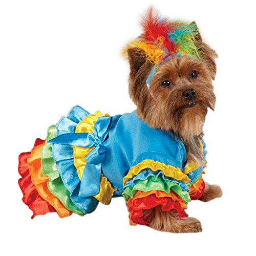Nineteen Twenties Costumes (Casual Canine ZW4238 20 19 Polly Parrot Costume, Large, Blue)