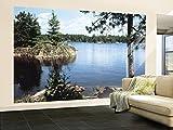 (99x164) Lake in the Woods Huge Wall Mural Art