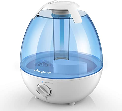 Are Humidifiers Good or Bad for your Allergies