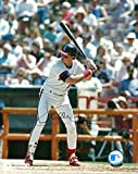 Signed Wally Joyner Photograph - 8x10 W COA AT BAT - Autographed MLB Photos