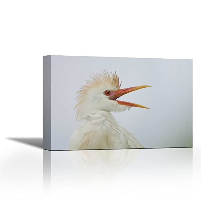Karmakara Fl St Augustine Portrait Of Cattle Egret Print On