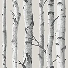 WallPops NU1650 Birch Tree Peel and Stick Wallpaper, Multi-Color