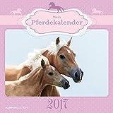 Mein Pferdekalender 2017 - Broschürenkalender (30 x 60 geöffnet) - Tierkalender - Wandplaner