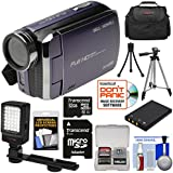 Bell & Howell DV30HD 1080p HD Video Camera Camcorder (Purple) 32GB Card + Battery + Case + Tripods + LED Video Light + Kit