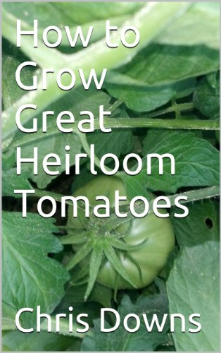 How to Grow Great Heirloom Tomatoes