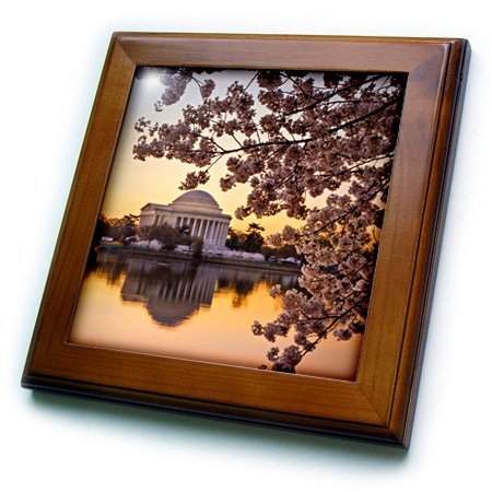 3dRose ft_207301_1 Cherry Blossoms and The Jefferson Memorial Washington Dc USA Framed Tile, 8